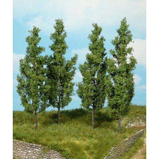 Poppel træer, 14 cm. høje, 4 stk.