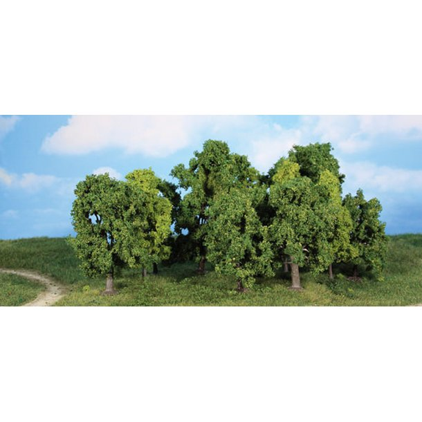 Træer 8-13 cm. høje, 12 stk.