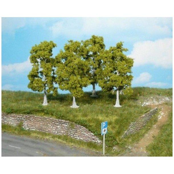 4 stk. Birketræer. Højde 10 cm