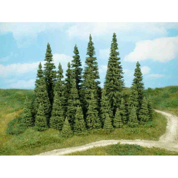 7 stk. Grantræer. Højde 7 til 11 cm