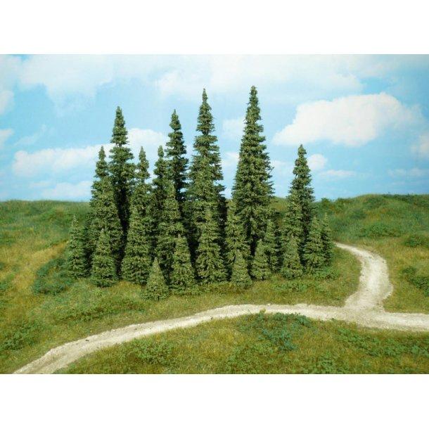 10 stk. Grantræer. Højde 16 cm