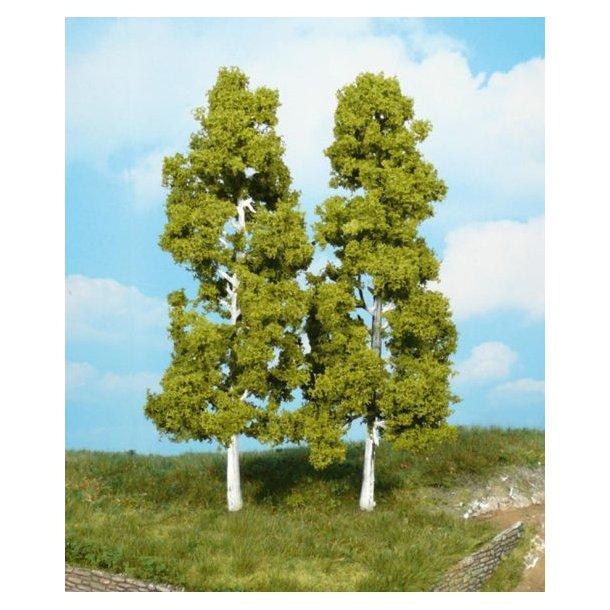 2 stk. Birketræer. Højde 18 cm